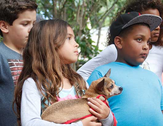 Kids learning about responsible dog care